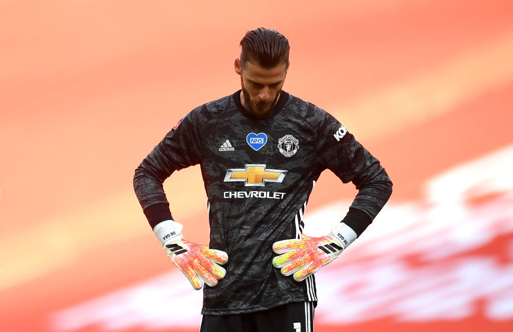 Berbatov backs under-fire De Gea to improve with competitiion for spots